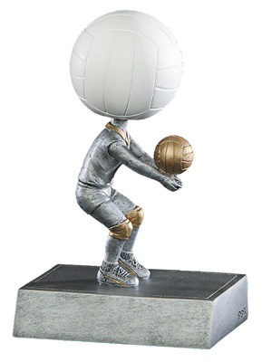 52519GS VOLLEYBALL